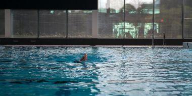 De Nekkerpool - wedstrijdbad1